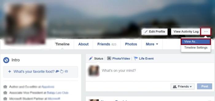 Useful Facebook Settings - View As