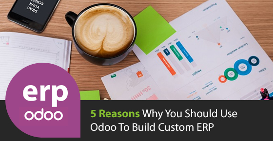 Odoo Custom ERP Solution