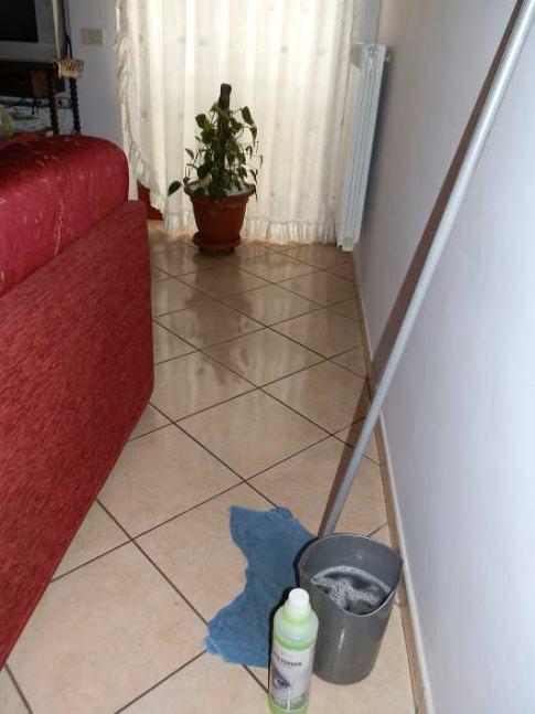 No-Tox, detergenti atossici per risolvere il problema pulizia