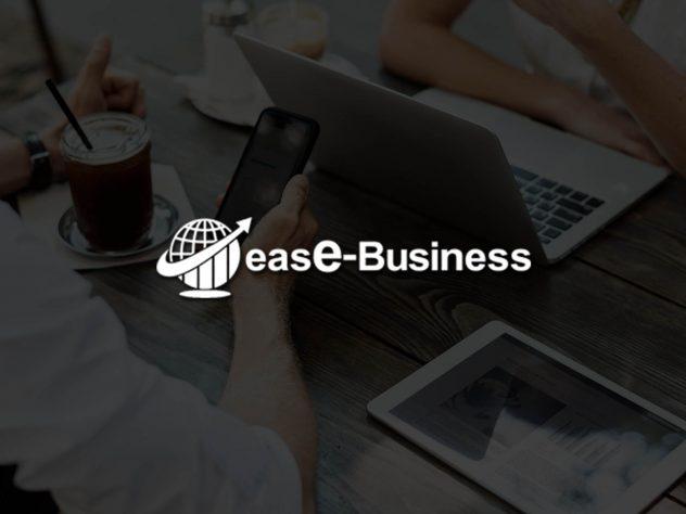 ease business custom web