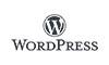 wordpress plugin and theme