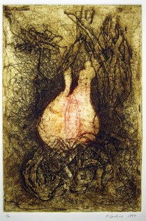 Narciss Bulb and Flower, 1997; Etching; Image: 13 x 9 inches