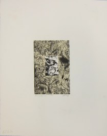 Margaret Craig; Bad Birds: Paring Pigeons, 1996; Photo etching; Image: 201 mm x 130 mm