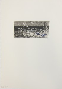 Margaret Craig; Bad Birds: Pigeons by the Shore, 1996; Photo etching; Image: 102 mm x 216 mm