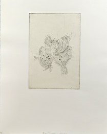 Ryan Cronk; Alaya/Consequences and Foraging, 2012; Intaglio, etching, chine colle; Image: 226 mm x 152 mm