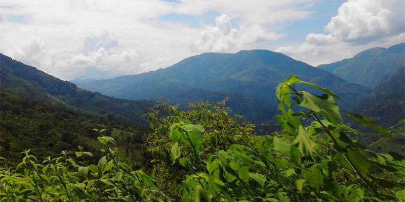Receta para hacer atol de elote guatemalteco  Aprende Guatemalacom