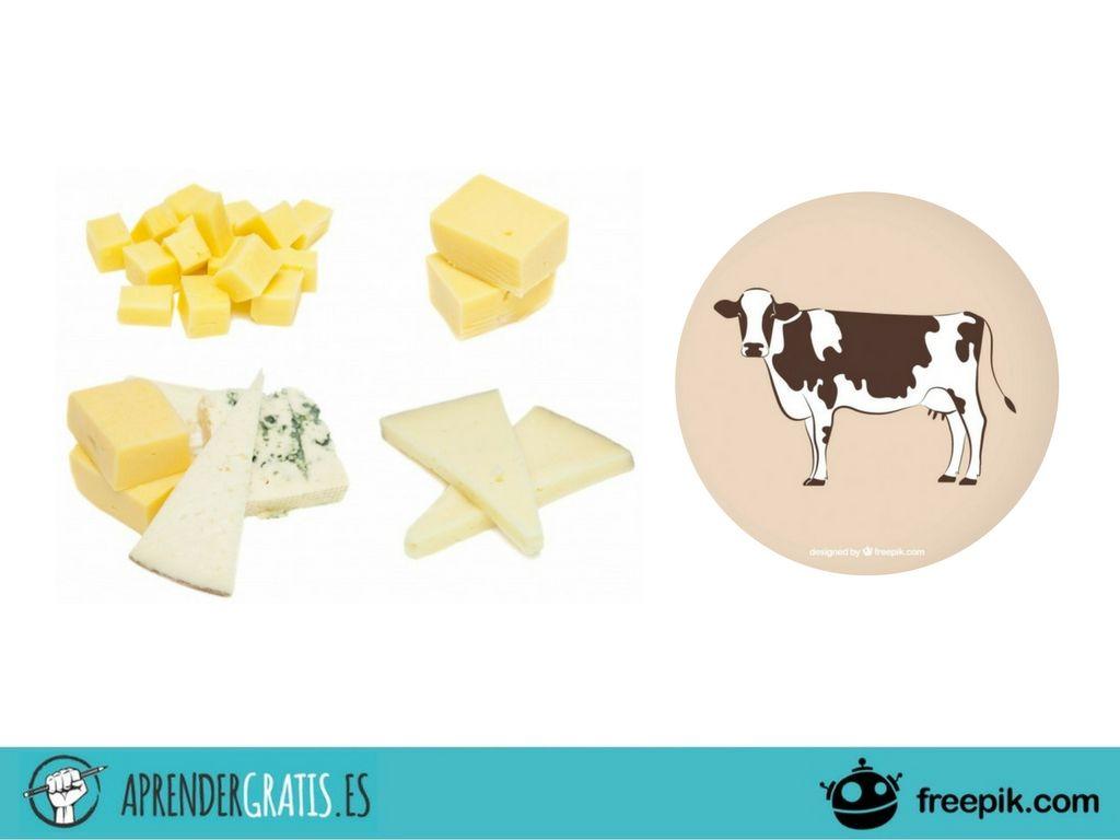 Aprender Gratis   Curso sobre la normativa para elaborar quesos con leche de vaca