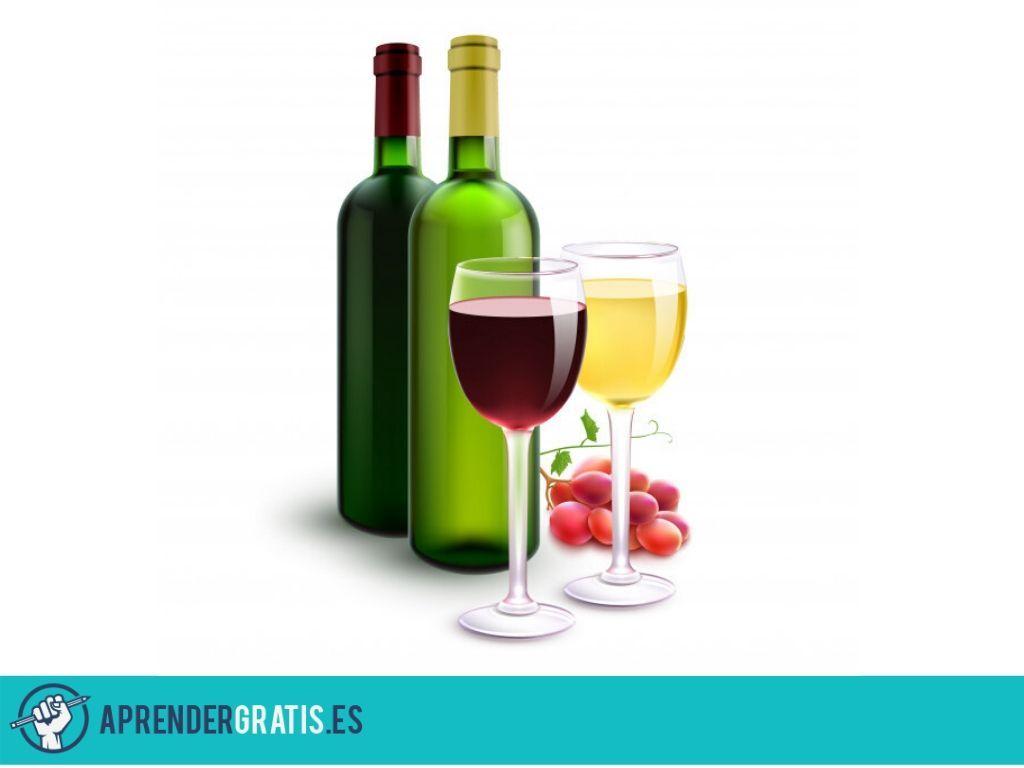 Aprender Gratis | Manual de viticultura ecológica y enología
