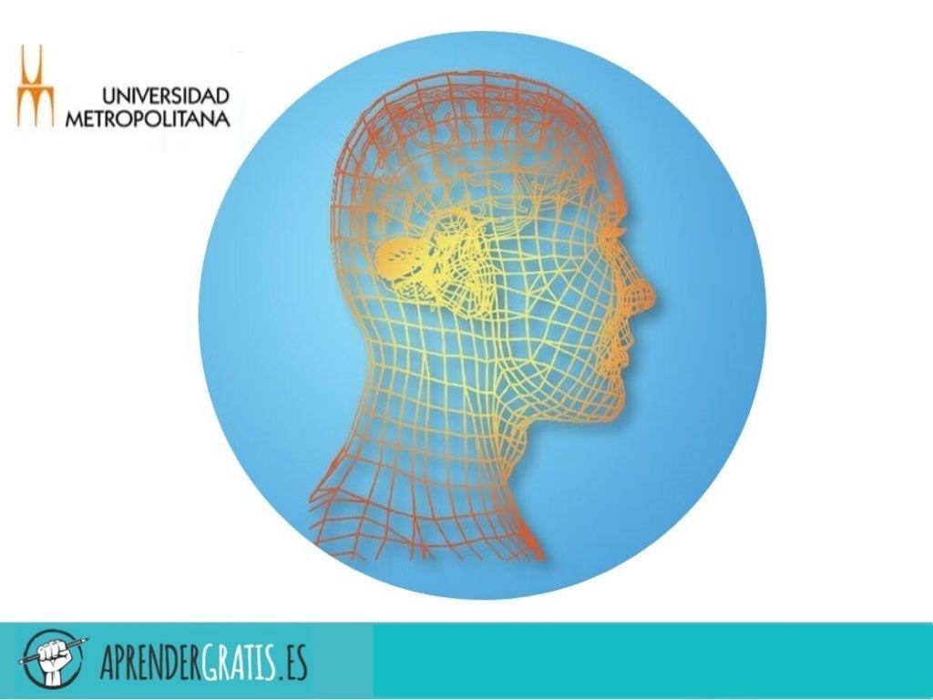 Aprender Gratis | Curso de psicología positiva