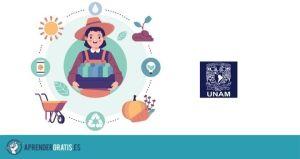 Aprender Gratis | Curso sobre agricultura urbana y periurbana