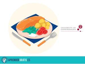 Aprender Gratis | Curso sobre la dieta nórdica