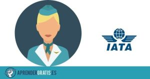 Aprender Gratis | Manual para ser azafata en aviones (tripulante de cabina)