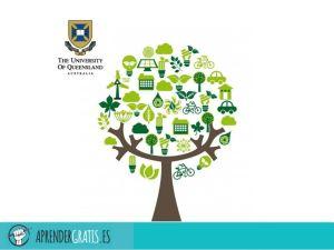 Aprender Gratis | Curso sobre los ecosistemas costeros tropicales