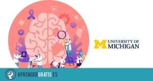 Aprender Gratis | Curso sobre neuroanatomía humana