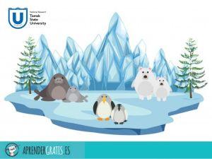 Aprender Gratis | Curso sobre el cambio en el Ártico