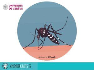 Aprender Gratis | Curso sobre el Zika
