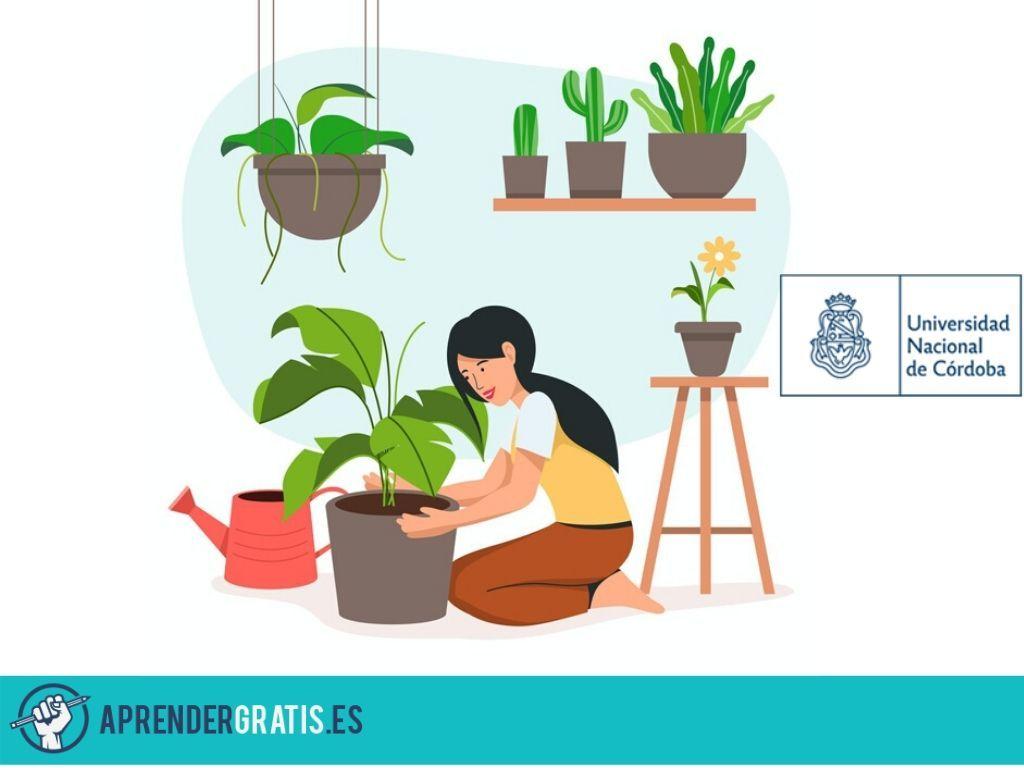 Aprender Gratis | Curso de diseño de jardines verticales