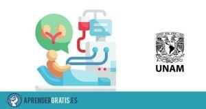 Aprender Gratis | Curso sobre diálisis peritoneal