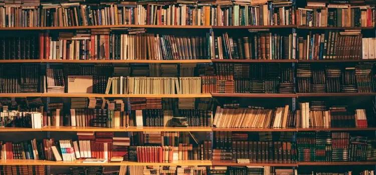 Os melhores livros e cursos sobre PMP