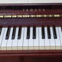 Sentarse en el piano. Previo a piano progresivo.