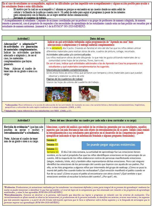 Informes Mensual de Trabajo Remoto 1