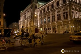 Viena - ópera noche