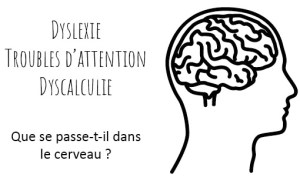 image titre neuroéduction et troubles d'apprentissage