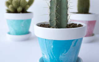 DIY Mini Marbled Painted Pots