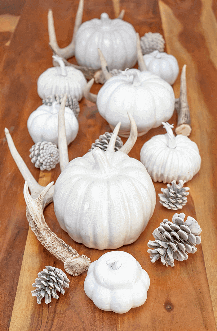 Using natural elements and a few design tricks, create a natural and neutral fall tablescape this fall. For more quick and easy decorating ideas, see aprettyfix.com.