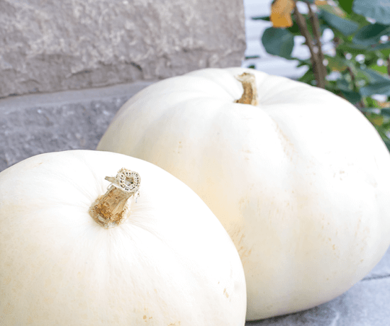 Pumpkins can last longer using this simple bleach solution and a coating of acrylic spray.