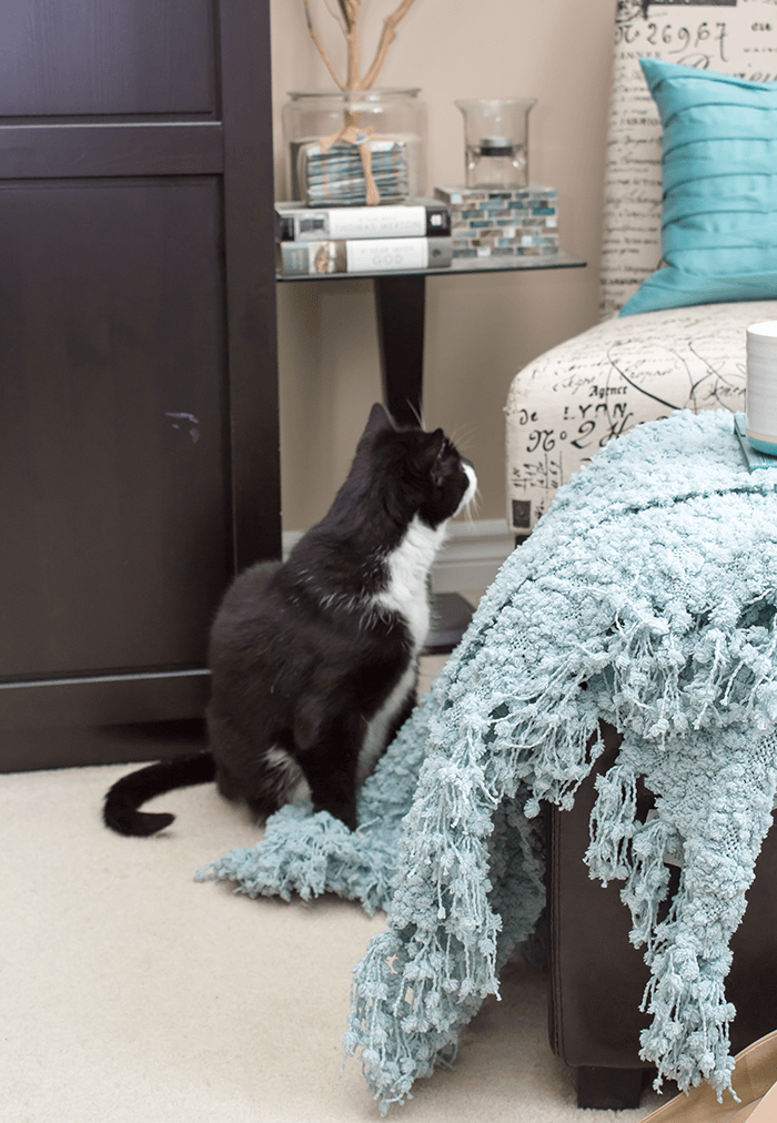 6 ways to add extra storage - ottoman & Napoleon the cat
