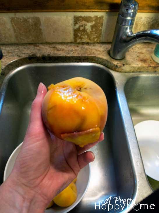 peach-jam-4