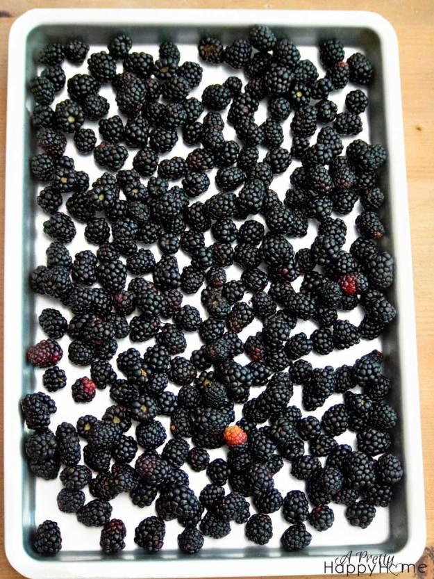 blackberryonsheet2