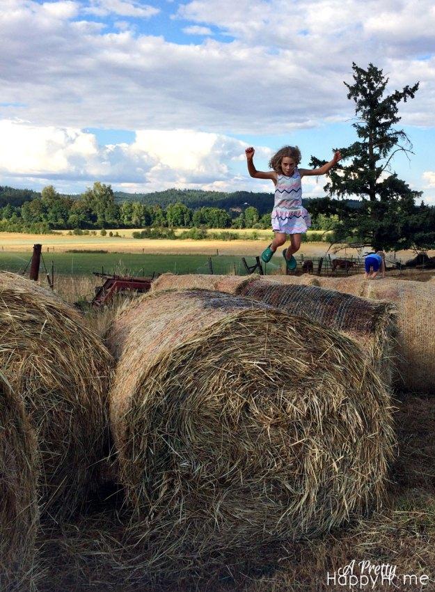 2015_7_14-Annika-Tor-Hay