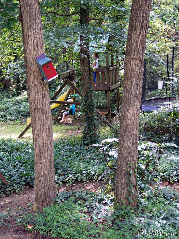2015_8_28-Kids-swinging