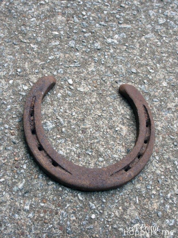 horseshoe9