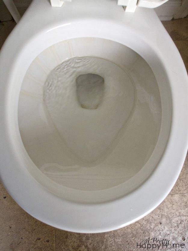 cleantoilet4