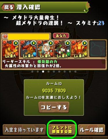 pazudorakyouryoku03 (2)