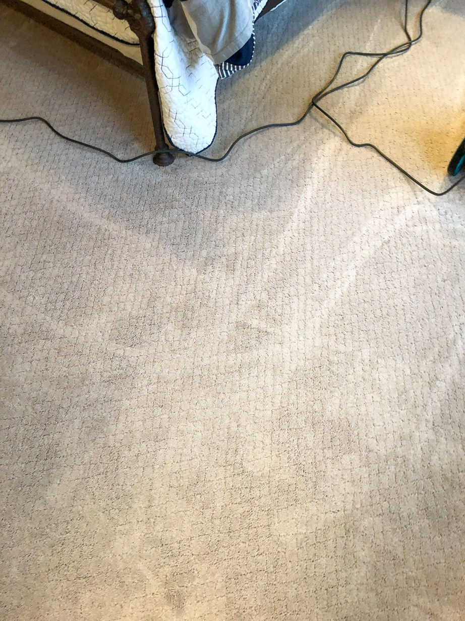 best way to get stains out of carpet