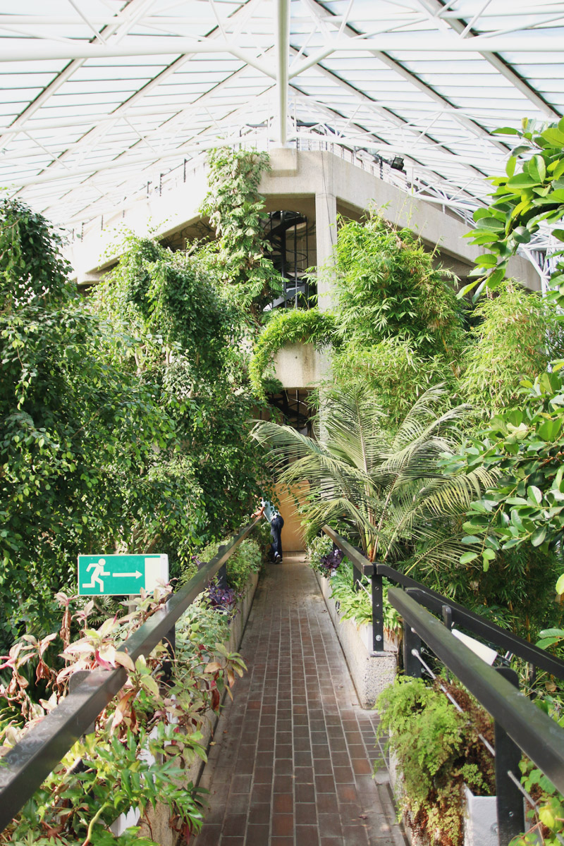 Barbican Centre Conservatory, London