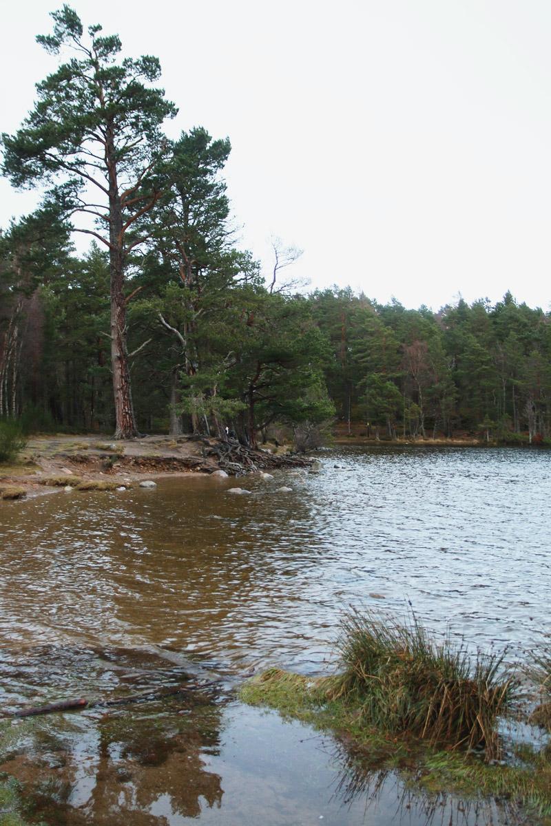Loch an Eilein, Aviemore, Scotland