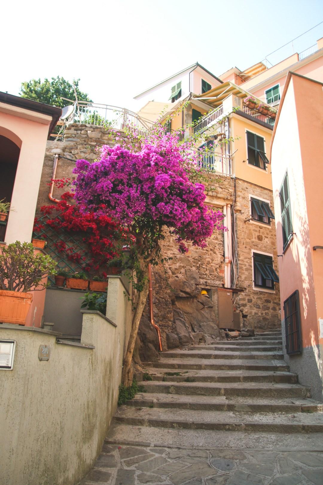 Wandering the Colourful Backstreets of Manarola in Cinque Terre, Liguria, Italy
