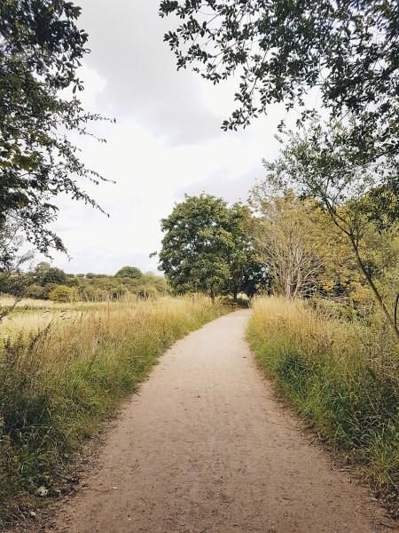 Rushden Lakes Shopping Centre Nature Walk