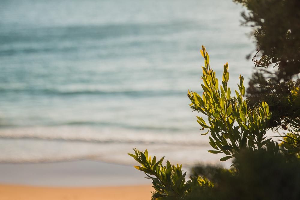 Praia do Beliche at Sunset