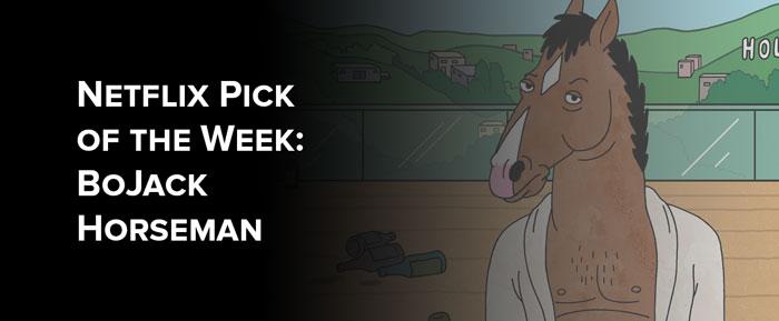 Netflix Picks: Bojack Horseman