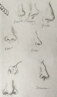 SKetches of Noses