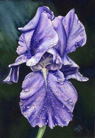 Print of original art by Aprille Janes