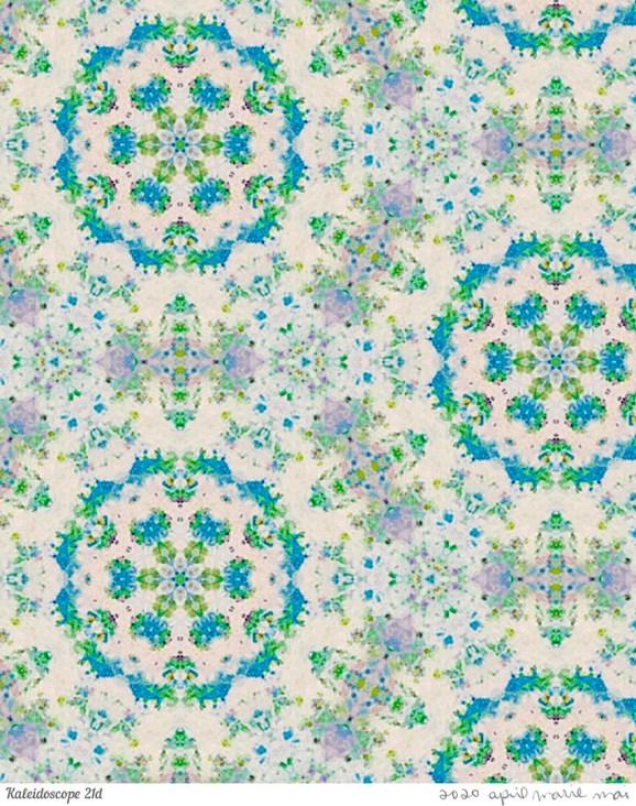 Kaleidoscope 21 Detail Print