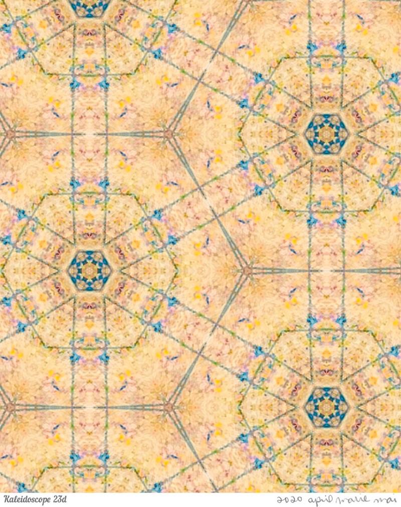 Kaleidoscope 23 Detail Print