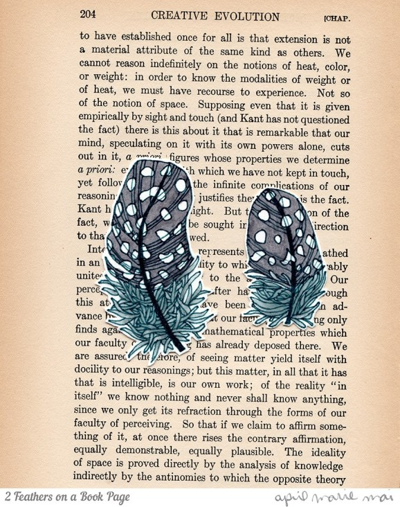 2 Feathers on a Book Page Print